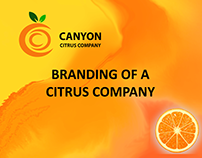 Branding of a Citrus Company