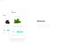 First Tea app. All about tea