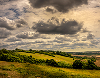 On the North Down Way (wide panorama)