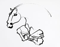 Horse Illustrations