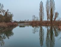 Reserve Naturelle de L'Ile du Rohrschollen