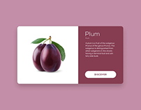 Fresh food — Fresh swipe  |  design & animation concept