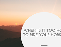 When is it Too Hot to Ride your Horse?