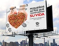 Diseño de campaña promocional.