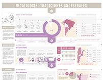 INFOGRAPHIC DESIGN #Disease in Argentina