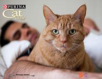 Stewart Cohen - Purina Cat Chow