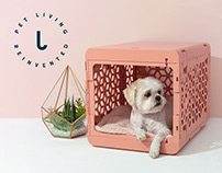 Kindtail pet products branding