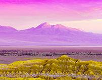 Planeta Púrpura