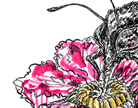 """""""Pink rose hip flower and bee"""""""