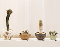 Bizarre Plants Exhibition