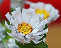 Chrasanthemum Flower