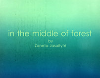 in the midle of forest