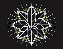 Herbal Pursuit CBD Oil Brand Design Concept
