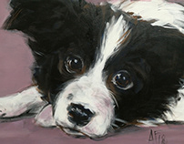 Puppy in lavender - one night sketch