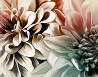 Digital Painting - Flowers