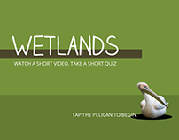 Wetlands Quiz