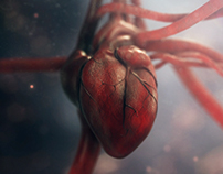 CGI Heart | Making Of