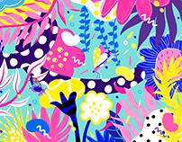 Lotte Spring 2018