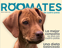 Revista Roomates