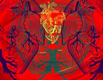 Pôster do Mês: Coração em Construção
