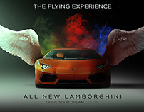 Lamborghini ( Flying Experince )