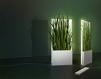 Grassism: A light that casts a shadow of grass