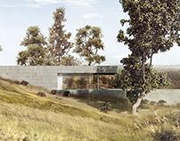 Modern Long House
