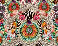 Cocar Color Print