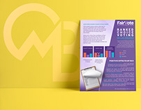 Informational Flyer for FairVote