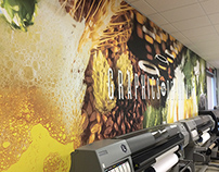 Murals & Wall Graphics