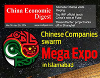 Covers for China Economic Digest