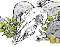 Blood on the Clocktower: Rulebook Illustrations