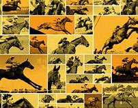 Racing Post –Narrow the Field