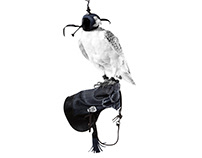 G-Star RAW - Falconry