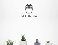 Branding for Betonica