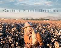 cotton field dreams