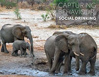 Capturing Behaviour: Social Drinking