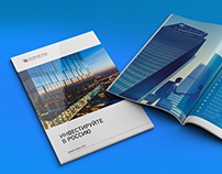 Annual Report for «RDIF»