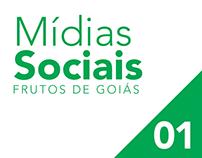 Rede social Frutos de Goiás