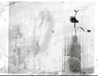 Ink Wash Photo series. / 「水墨写真」写真集。