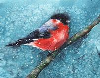 акварельные открытки / watercolor cards