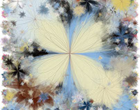 iteration flower (2013-2016)