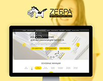 Zebra automation program