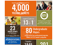 Infographic and Web Design // Admission Statistics