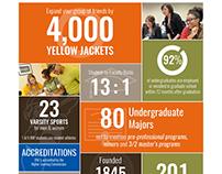 Infographic and Web Design // Admission Statistics
