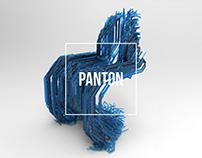 PANTON | VOXEL