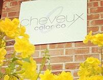 Cheveux Color Co Logo