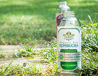 Kombucha Synergy Beverages