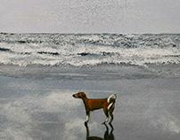 Jolie on the beach