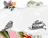 Brochure Fondo Natural